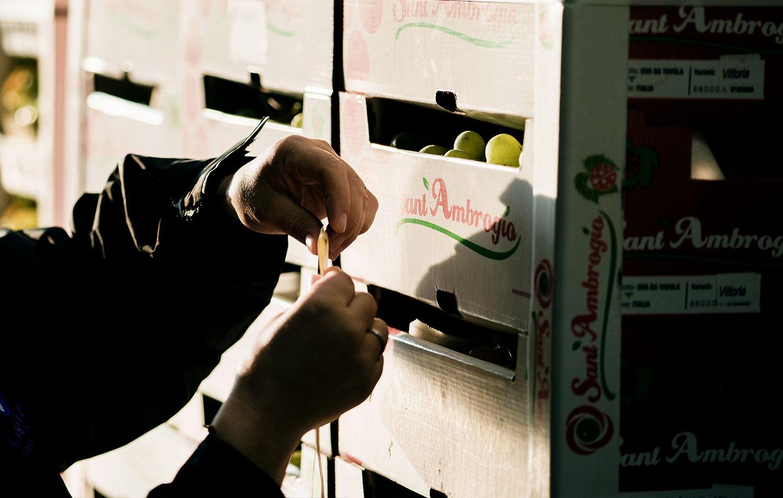 Etichettatura frutta all'ingrosso per GDO Due Erre
