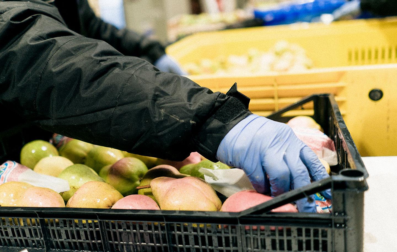 Soluzioni di packaging per ogni esigenza per frutta e verdura all'ingrosso, Due Erre
