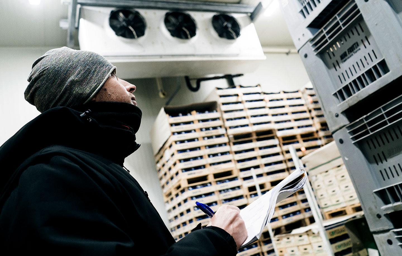 Gestione magazzino import export frutta tropicale, Due Erre Padova