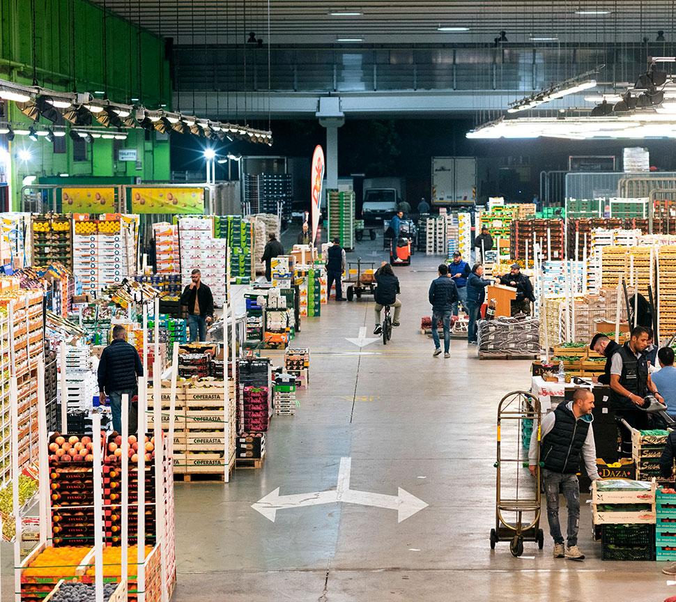 Due Erre all'interno del Mercato Ortofrutticolo di Padova