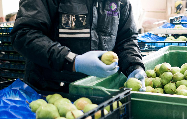 Controllo frutta e verdura all'ingrosso, Due Erre Padova