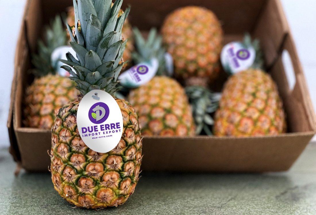 Ananas importazione aerea all'ingrosso